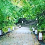 三十一番竹林寺(ちくりんじ) 五重塔はお遍路に4ヵ寺だそうです #31Chikurinji