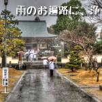 四十番札所 観自在寺(かんじざいじ) 愛媛の愛南町は素敵な場所でした #40Kanjizaishi