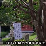 ニ番札所 極楽寺(ごくらくじ) 42歳の弘法大師がこの地で三七日間『阿弥陀経』を読誦し、修法 #2Gokurakuji