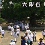 五番札所 地蔵寺(じぞうじ) 5・5センチの勝軍地蔵菩薩 #5Jizoji